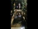 На крещение с Троицк