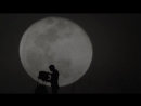 Режиссёр взял телескоп на улицы Лос-Анджелеса, чтобы показать прохожим Луну