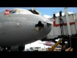 Крупная птица пробила фюзеляж пассажирского самолета в США