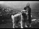 Macedonain Folklore - Shari moma, sharen chorap (Pirinski Grivaci)