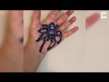 Невероятные 3D-рисунки на теле