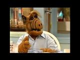 Alf Quote Season 4  Episode  9_Собака