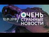 12.01 | ОСН #26. Крокодилы вмёрзли в лёд
