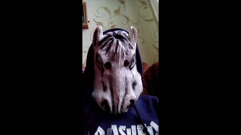 лошадь или зебра