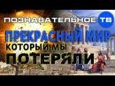 Прекрасный мир, который мы потеряли Познавательное ТВ, Дмитрий Мыльников