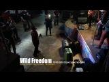 Wild Freedom - Фестиваль тяжелой музыки (Live 10032018 г.)