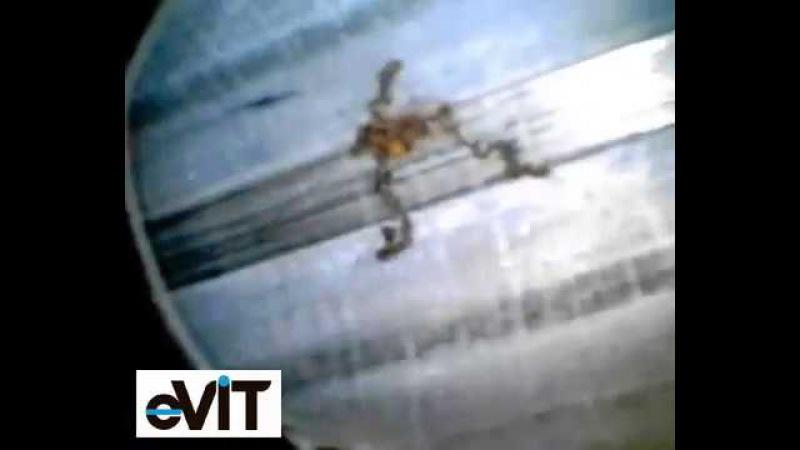 Эндоскопия ружейных стволов - видеоэндоскопы eVIT