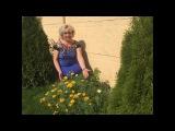 Эшольция - солнечный мак . Особенности . Выращивание .