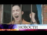 Премьера наПервом канале— криминальная драма «Непокорная».