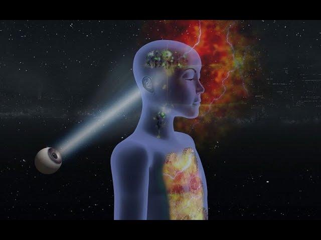 Evolution Fast-forward - Part 2 - Integral Yoga of Sri Aurobindo