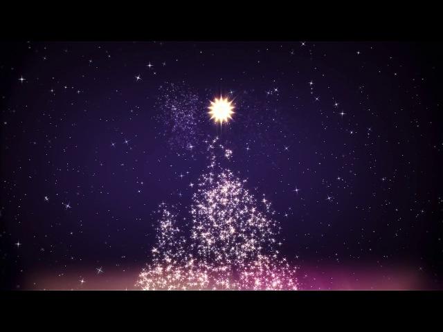 Запись трансляции великой вечерни в праздник Рождества Христова