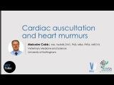 VET Talks- Cardiac Auscultation and Heart Murmurs