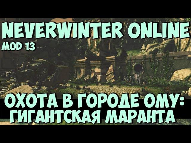 Охота в Городе Ому: Гигантская Маранта | Neverwinter Online | Mod 13
