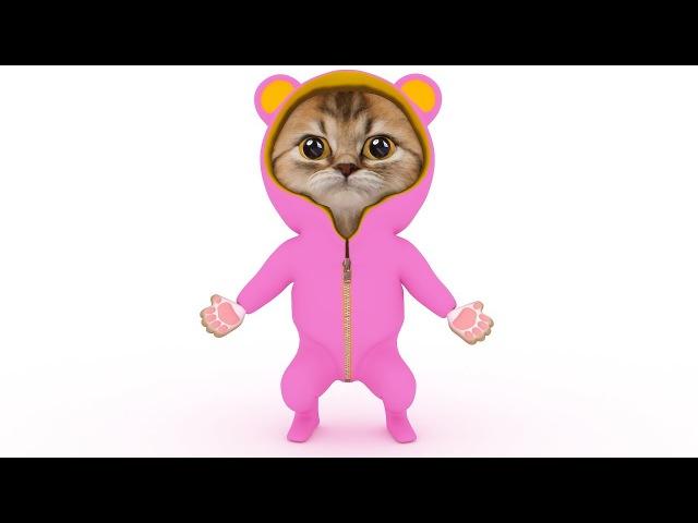 DJ RuMu - meow dance kitten song