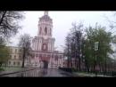 Пальмы в снегу, Москва зимой