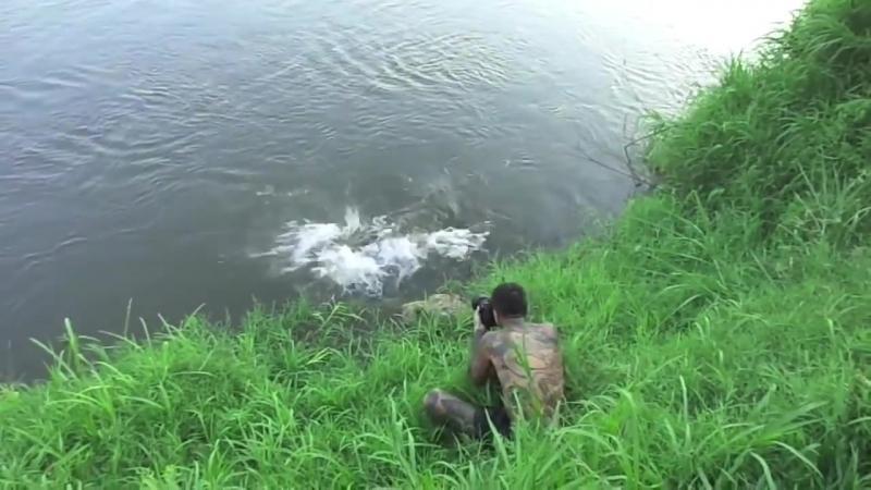 Photographer narrowly escapes crocodile attack.