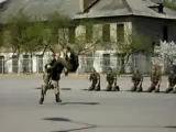 отдельный батальон охраны и разведки(ПдБ-Спецназ РВСН)