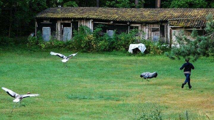 Oka Narute Reserve