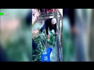 В Китае «треснувший» стеклянный мост напугал туристов