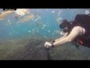 So much plastic! British diver films deluge of waste off Bali