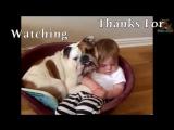 Это видео докажет вам׃ дети и собаки созданы друг для друга!