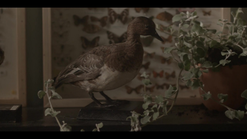 Charles Murdoch - Dekire [Feat. Oscar Key Sung]