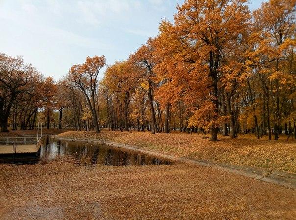 Парк Гагарина  Фото: Алексей Девяткин