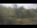 Природа России из окна поезда Москва-Владивосток