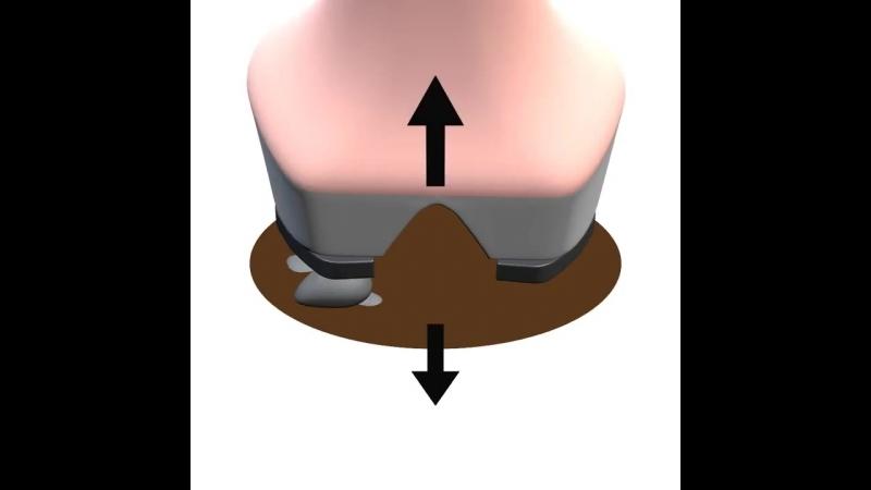 3D модель работы копыта в универсальных, безразмерных подков HorseMaster.ru 180 × 180 × 14