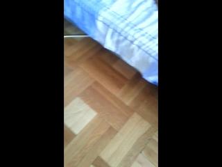 кошка наркошка))