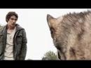 Sindicator - Бешеные Псы official video