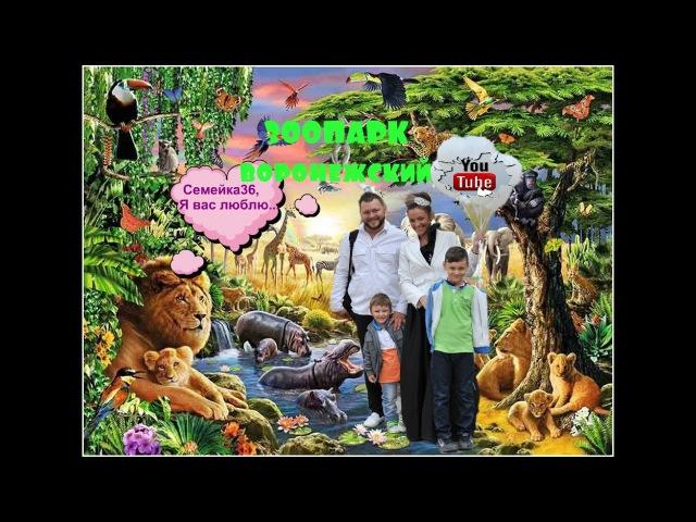 Очень много раз были в нашем Зоопарке г.Воронеж,а решили вдруг снять всё на видео))Что получилось?..смотрите сами))Приятного просмотра