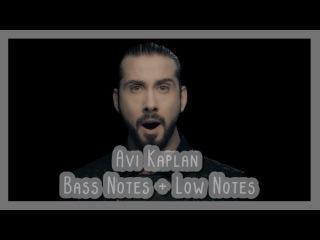 Avi Kaplan - Bass + Low Notes
