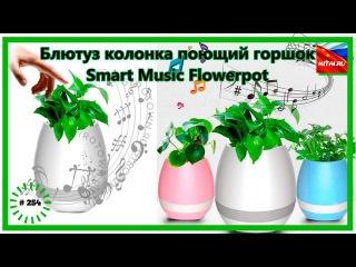 Блютуз колонка поющий горшок   Блютуз колонка Smart Music Flowerpot #254