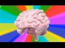 Миф о левом и правом полушариях мозга [Ted-Ed]