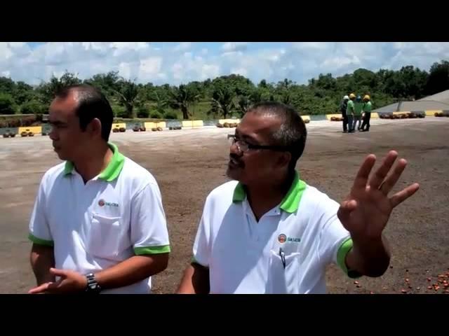 Sarawak Land Consolidationand Rehabilitation Authority managers