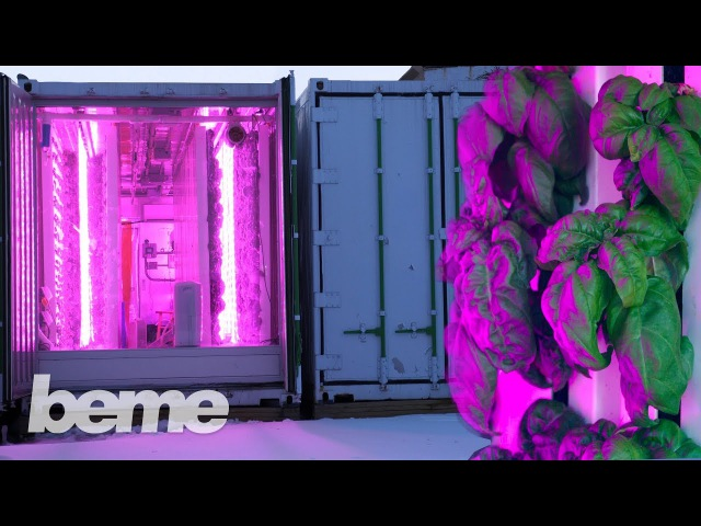 Kimbal Musk's Farm of the Future (Yes, Elon's brother)