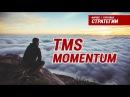 Торговые системы - TMS Momentum | Подробный разбор