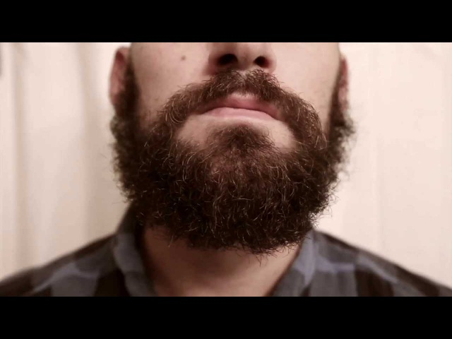Reason why you dont shave your beard