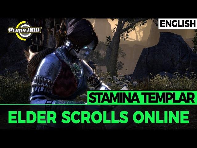 ESO - Stamina Templar: PVE Build Dragon Bones (English)