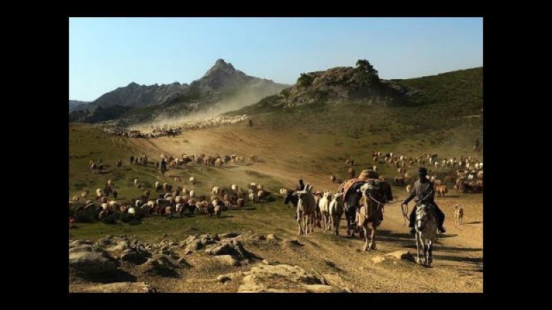 Кто мы?... азери?.... татары?.... турки?... Муки выбора...