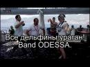 Band ODESSA Все дельфины ураган