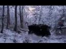 Бесстрашный охотник на кабана