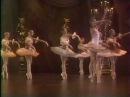 Minkus Paquita with Tcherepnin Variation Mariinsky Makhalin Zelensky Pankova Sitnikova