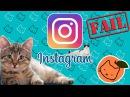 Котики ✩ Instagram = ㅇㅅㅇ = Подборка за весь Сентябрь 2017 1 из 2