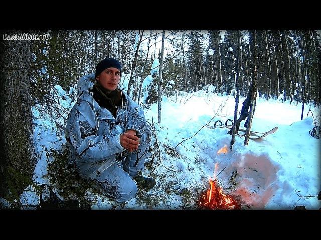 Охота в январе на лыжах / Поиски боровой птицы в январе / Карабин СКС / МаслаковTV