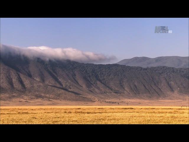В дебрях Африки. Намибия пески времени