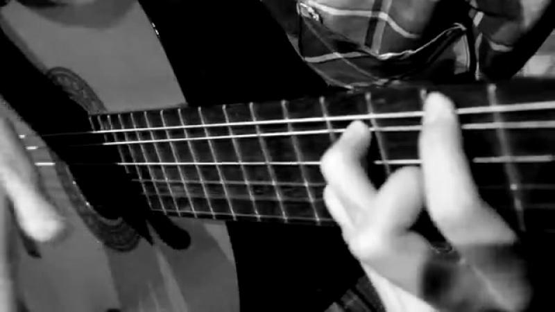 Paddy Sun_Sunflower_на классической гитаре_Мищено Александра