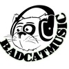 Bad Cat music Shop