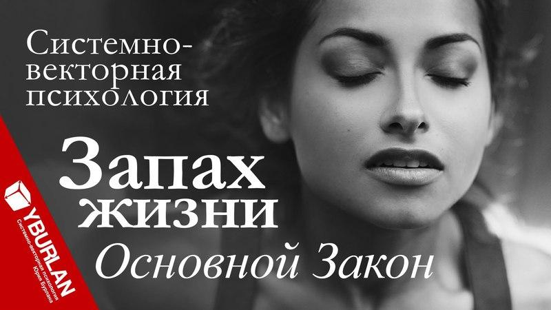 Запах Жизни. Основной Закон. Системно-векторная психология. Юрий Бурлан
